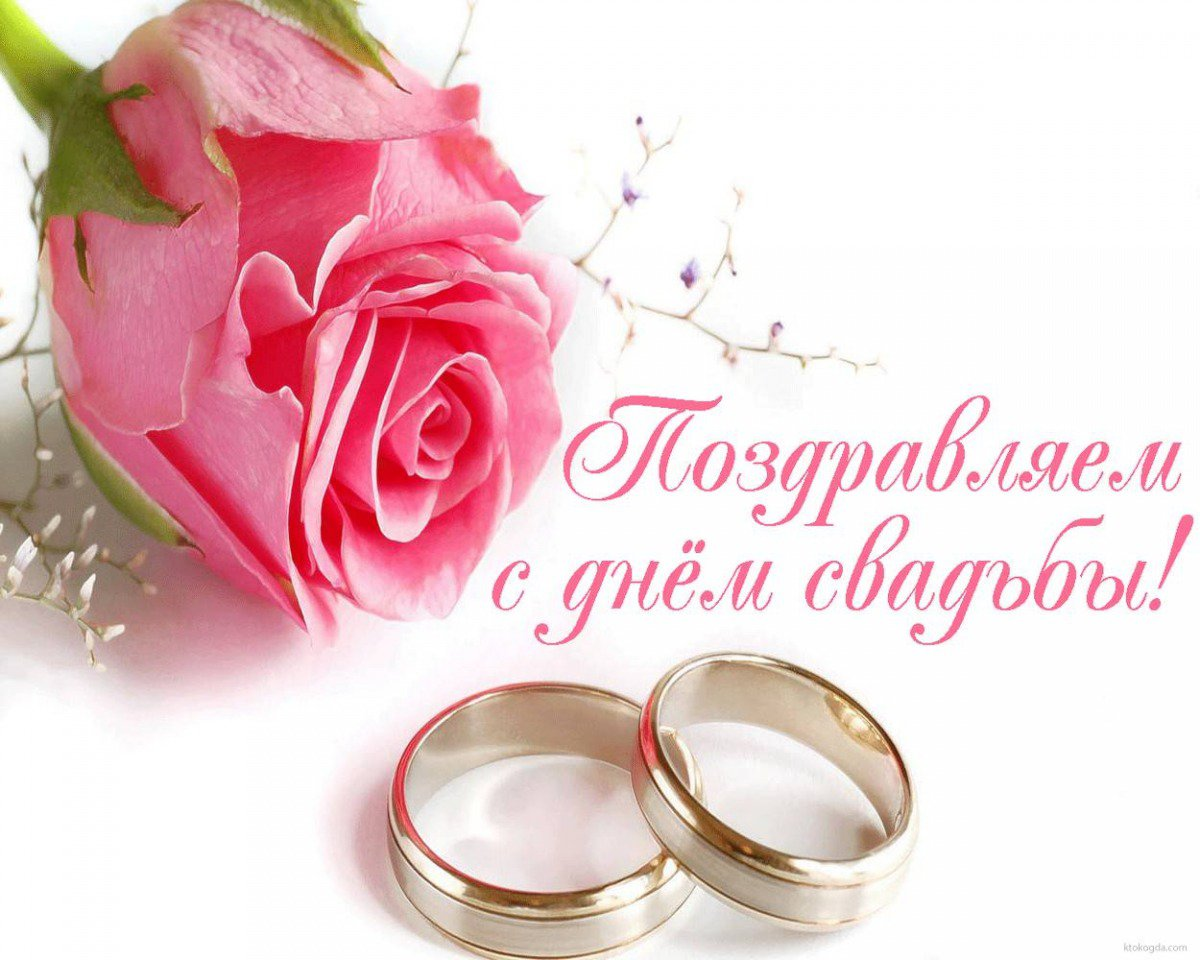 советы как поздравления с днем свадьбы красивые до слез насрал ним